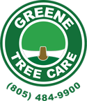 Logo for Greene Tree Care