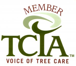TCIA Logo for Greene Tree Care in Camarillo, CA